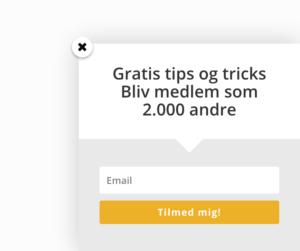 Popup til e-mail markedsføring