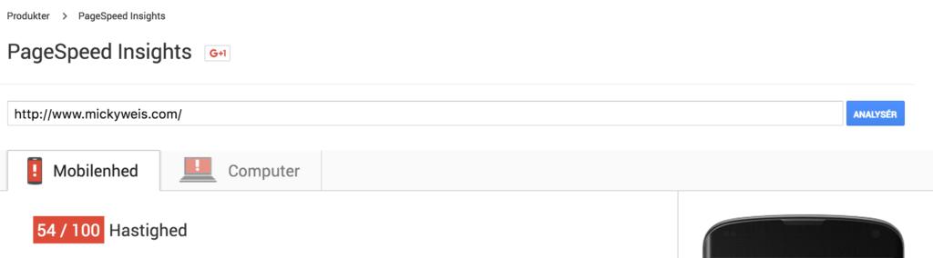 Google SEO Page Speed Insights